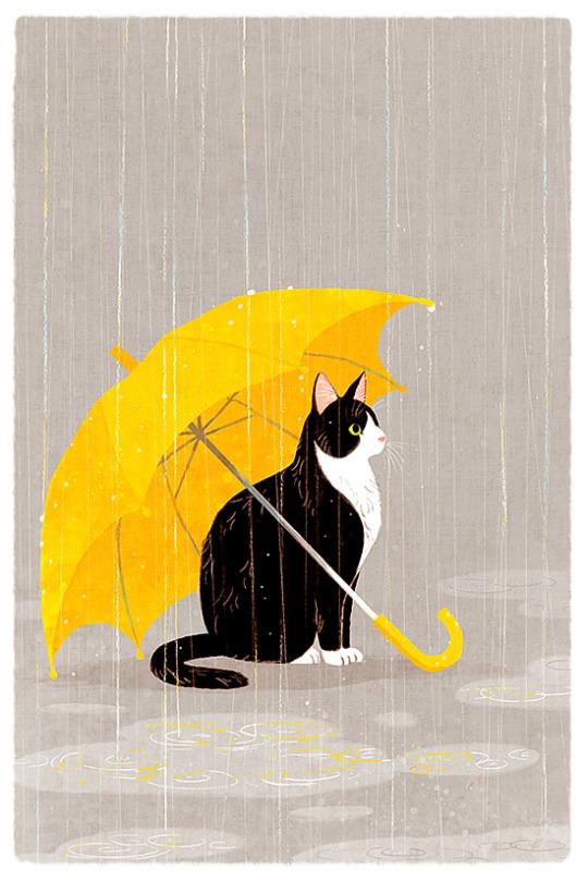 cat-with-umbrella